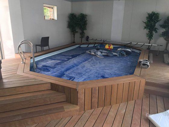 petite piscine intérieur avec structure et petit escalier en bois